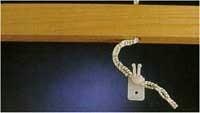 Koordpennen Anchor